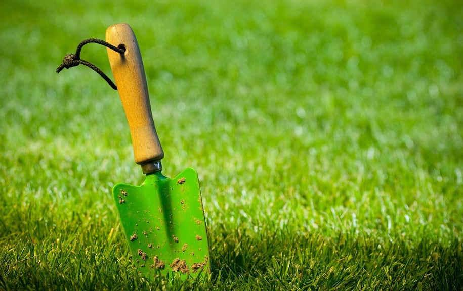 Paysagiste lyon paysagiste dardilly jardinier ecully for Jardinier entretien jardin